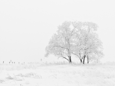 Winterwunderland Inspirationen Fur Den Winterurlaub Flecken Necken